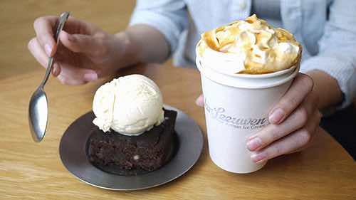 van leeuwen artisan ice cream brownie seaport financial district
