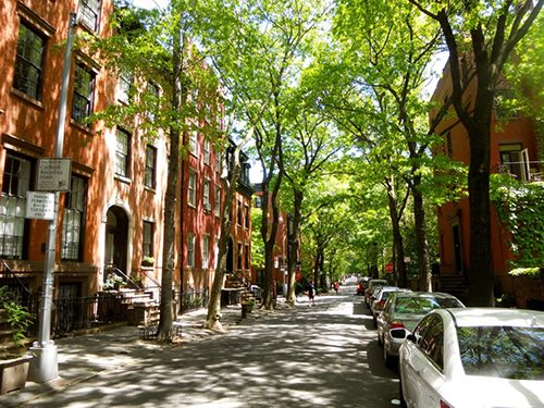 brooklyn heights quaint tree streets brooklyn new york city ny