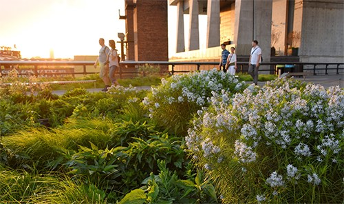 The High Line gardens meatpacking district new york city ny