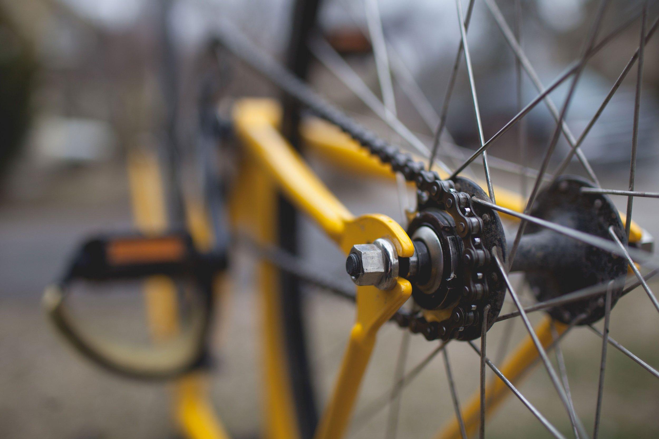 creekside-bike-fitting.jpg