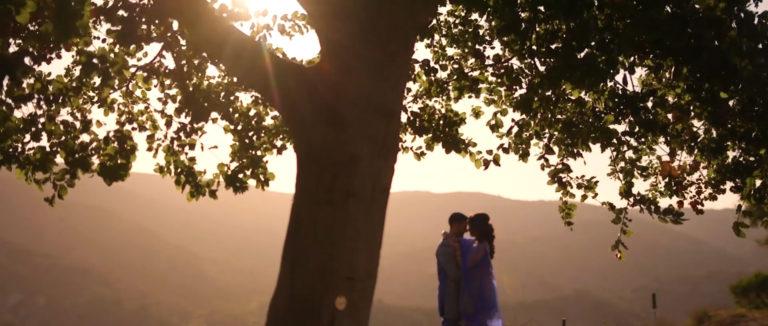 Indian_Wedding_Videography_Ritz_Carlton_Laguna_Niguel-768x326.jpg