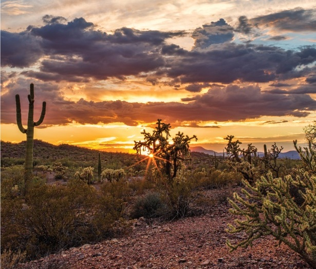 DISCOVER WHAT PINAL COUNTY CAN DO FOR YOU -