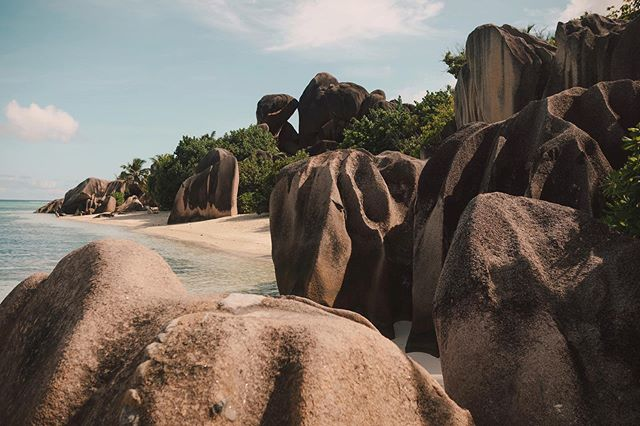 Behold — La Digue, Seychelles in all her glory, beauty, and wonder. Who has the Seychelles on their bucket list? If not, you absolutely should. It's one of the dreamiest and most romantic destinations in the world. 🙋🏻‍♀️🙋🏼‍♂️🙋🏽‍♀️🙋🏾‍♂️🙋🏿‍♀️ // #goodtravels #ladigue #ansesourcedargent #seychelles #thisisafrica