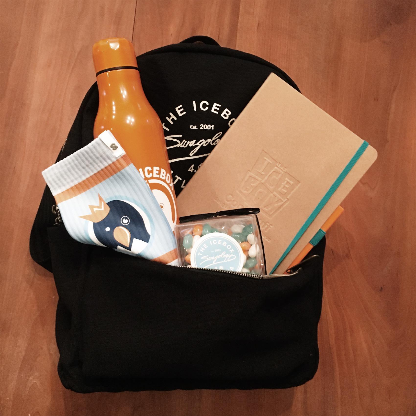 The-Icebox_Swagology-Swag-Bag-2018
