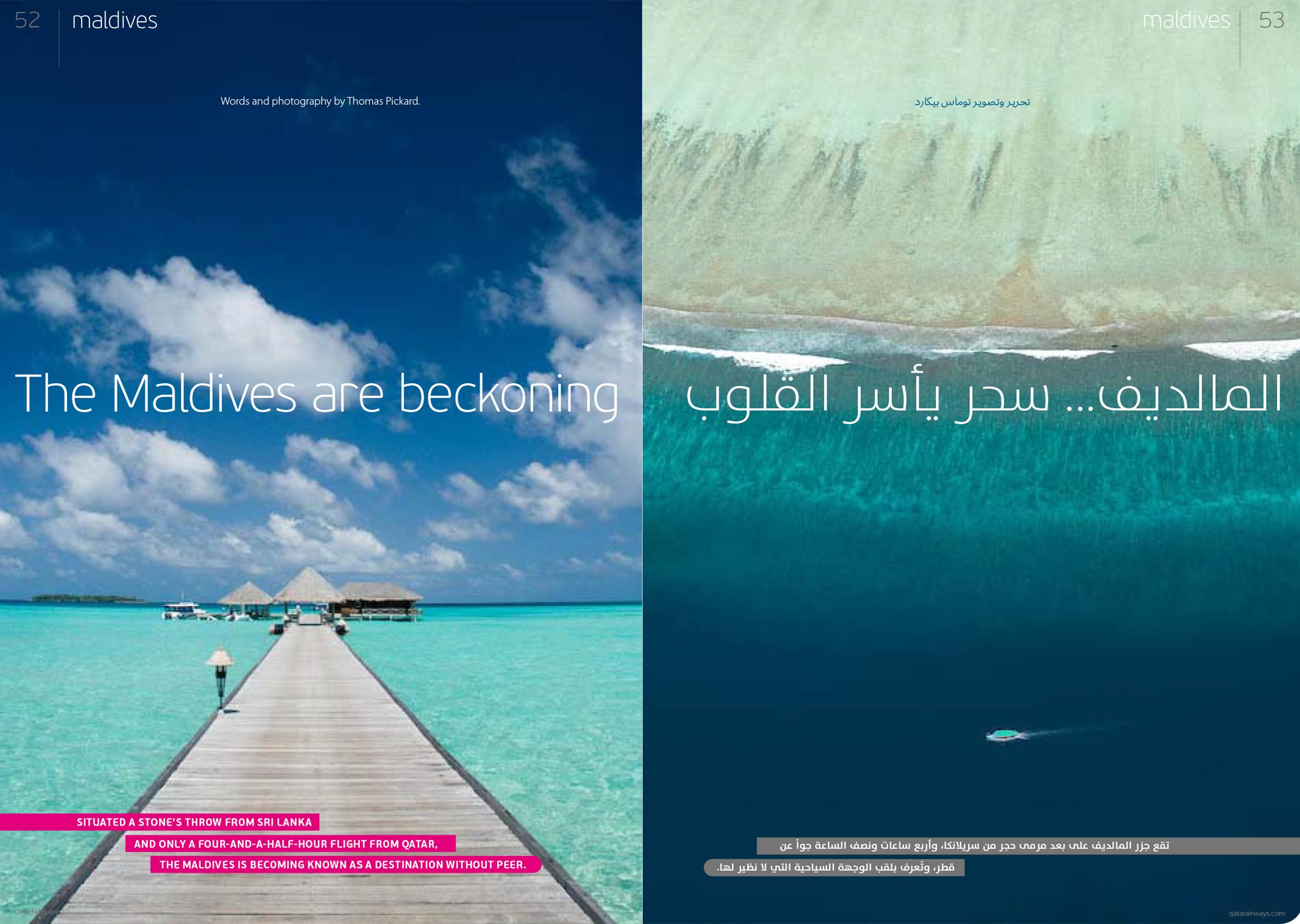Pickard_Oryx_Maldives.jpg