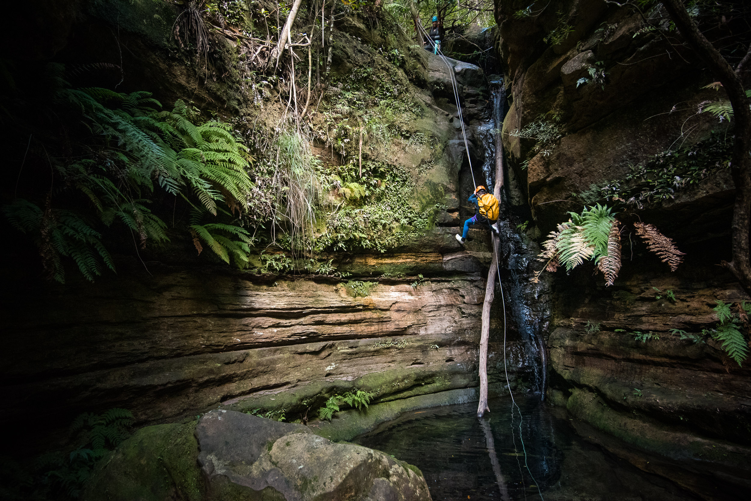 Thomas, Rob, Hayley, Arthur and some of his buddies, did the nearby Juggler Canyon, Medlow Bath.