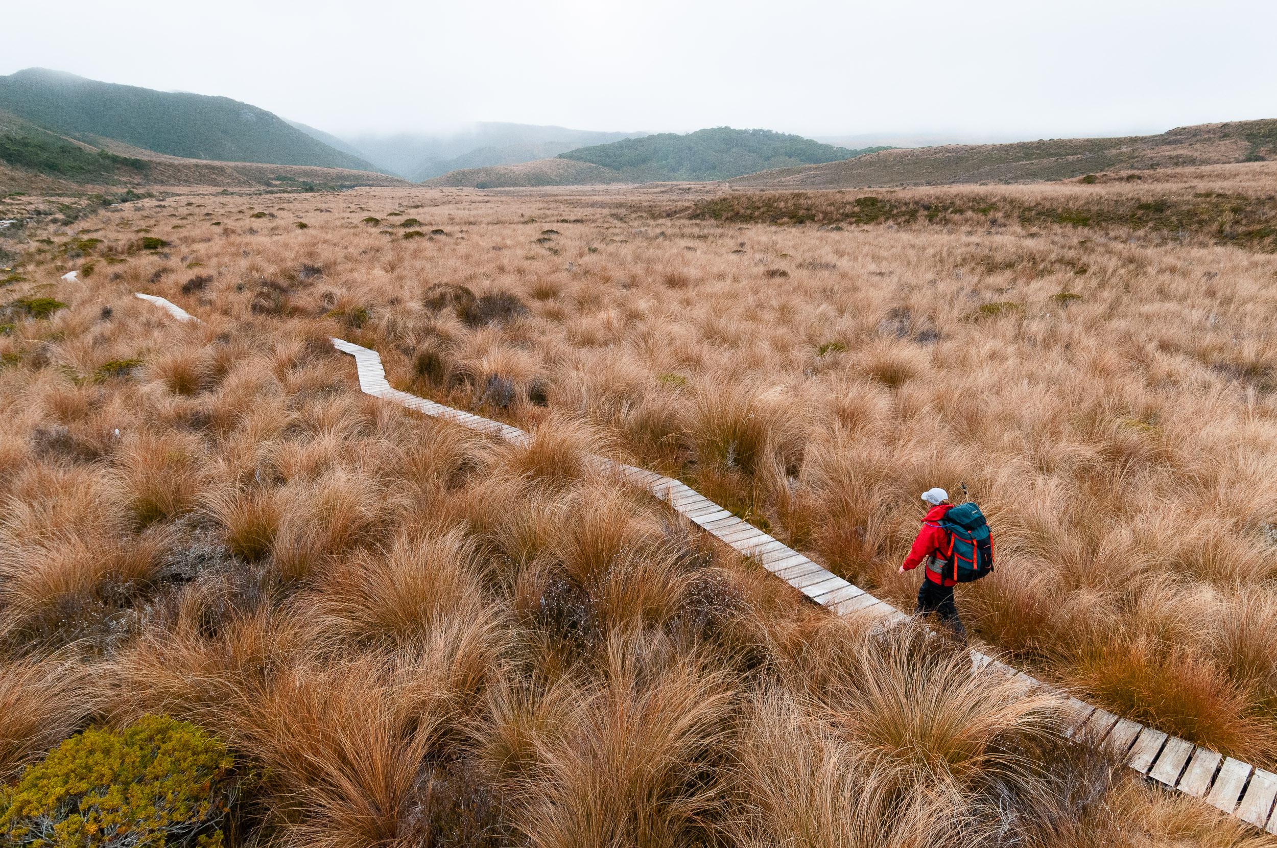 Crossing Gouland Downs, The Heaphy Track, New Zealand. © www.thomaspickard.com