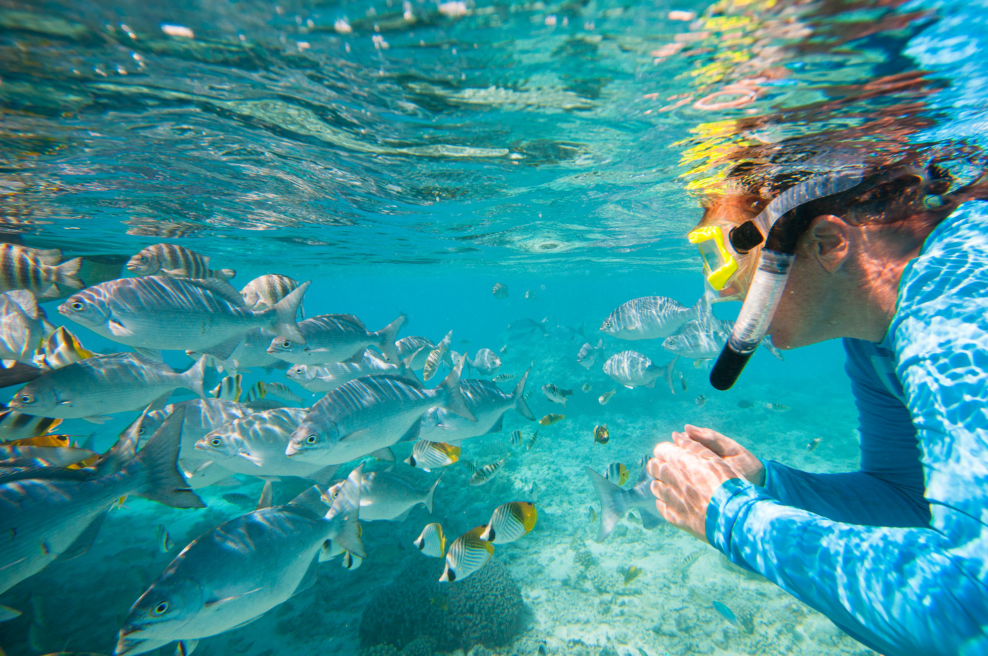 Snorkelling in beautiful Aitutaki Lagoon, Cook Islands. © www.thomaspickard.com