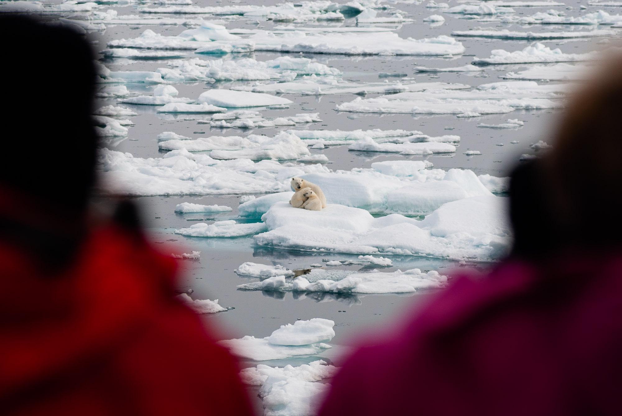 Svalbard, Norway. © www.thomaspickard.com