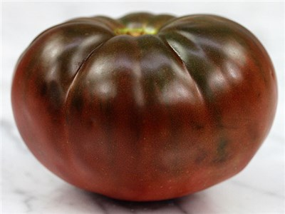brandywine tomato.jpg