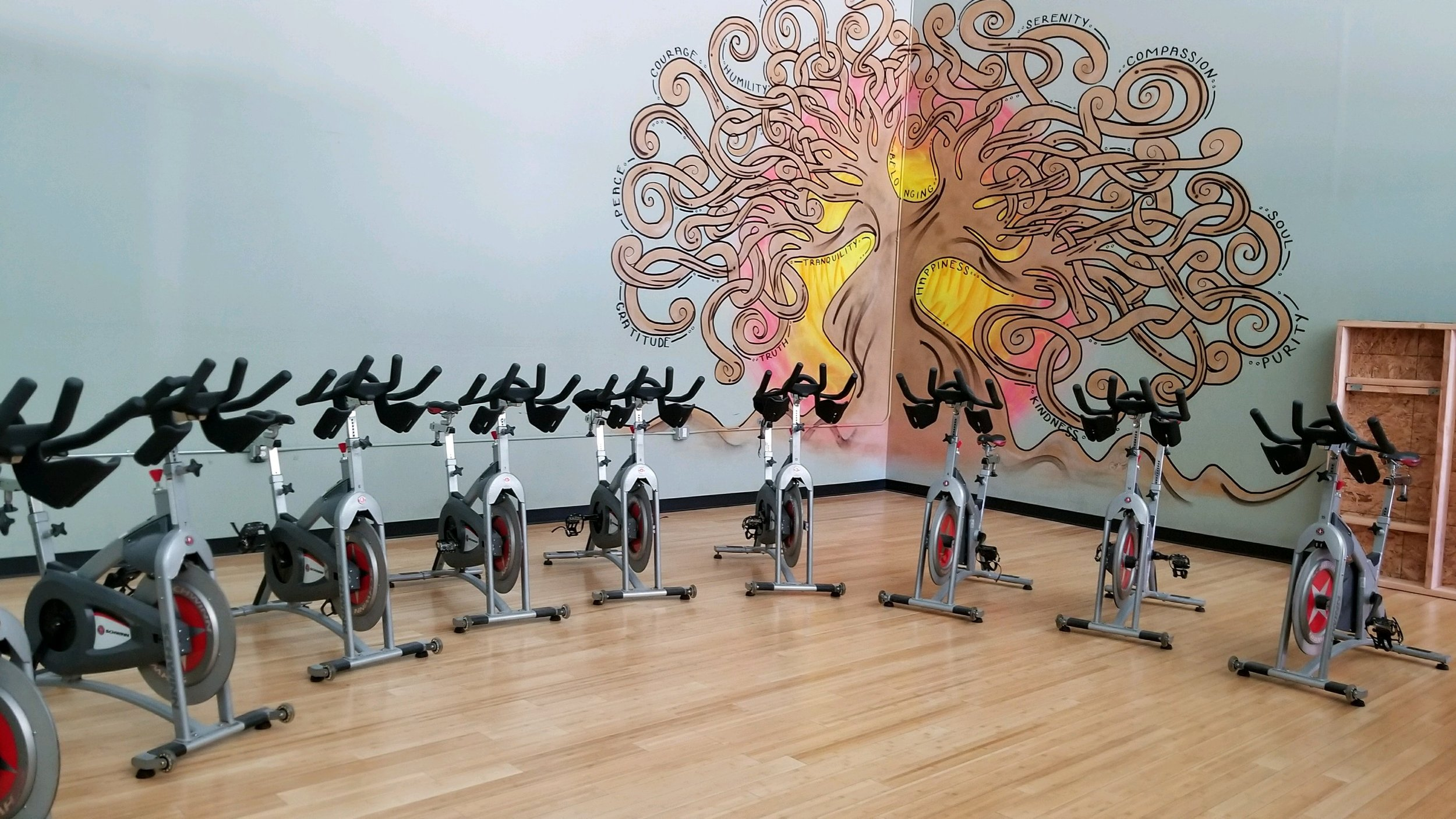 stock photo cycling spin group exercise room.jpeg