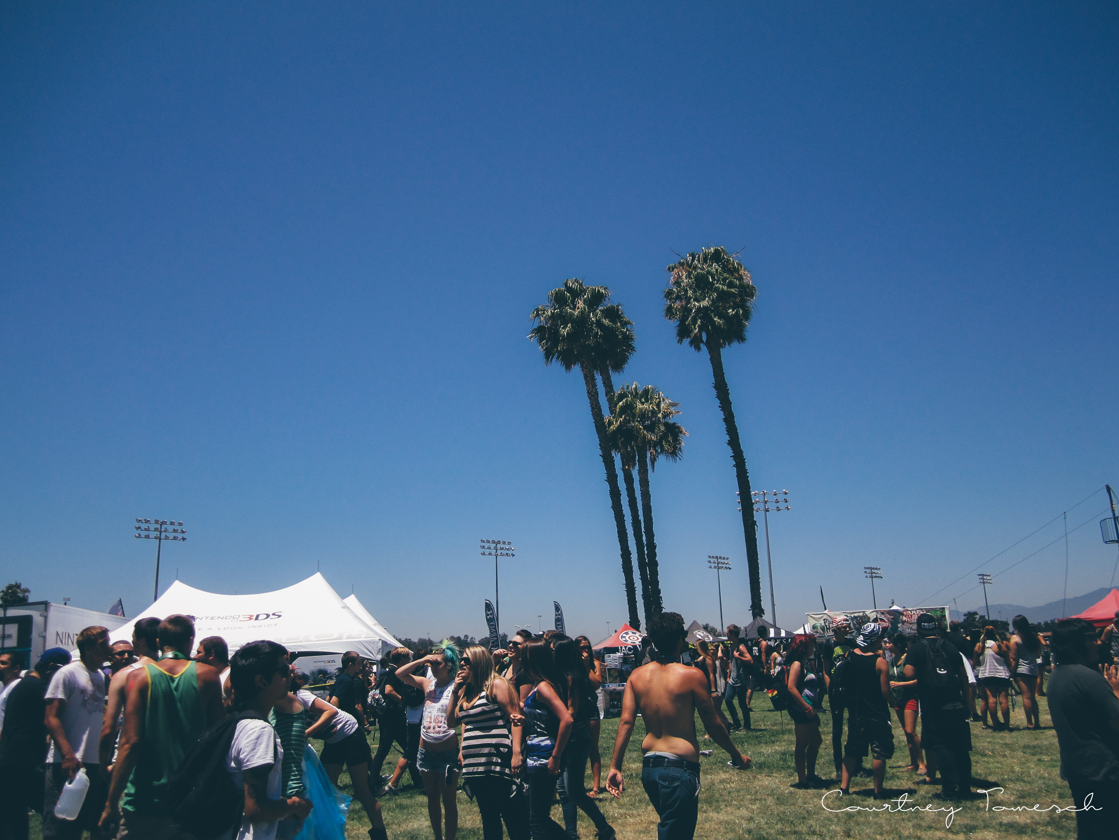 Palm Trees and no clouds at warped tour weird!