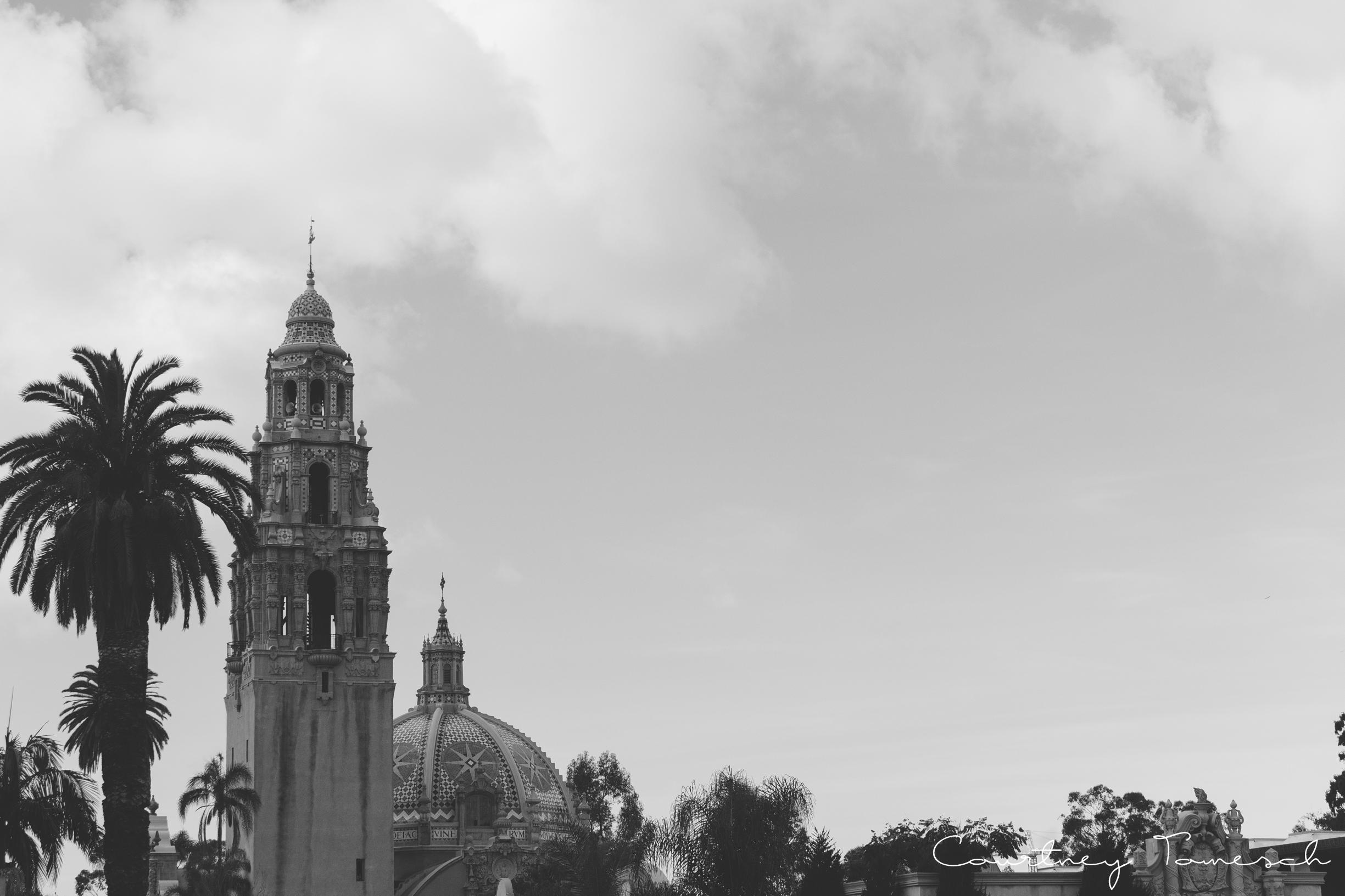 Balboa_28.jpg