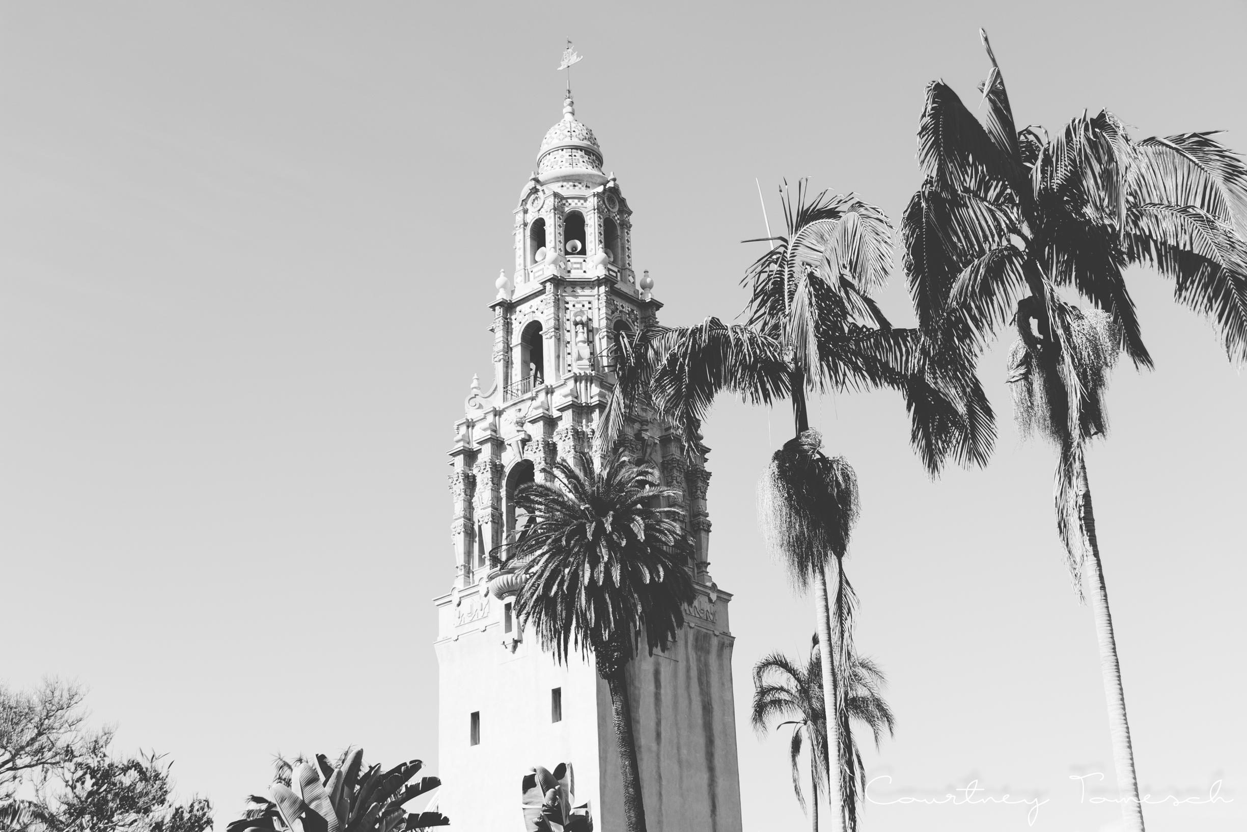 Balboa_59.jpg