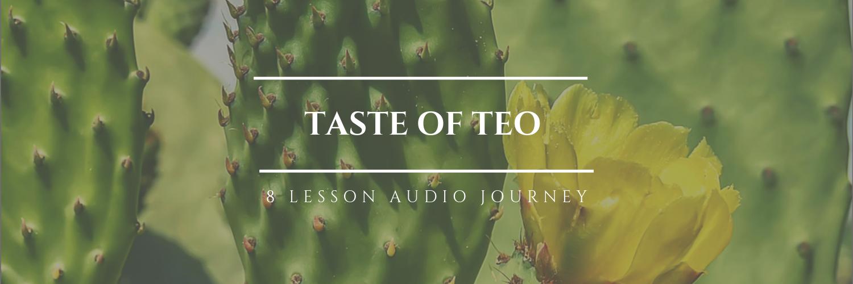 Banner Online CourseTaste of Teo (1).png