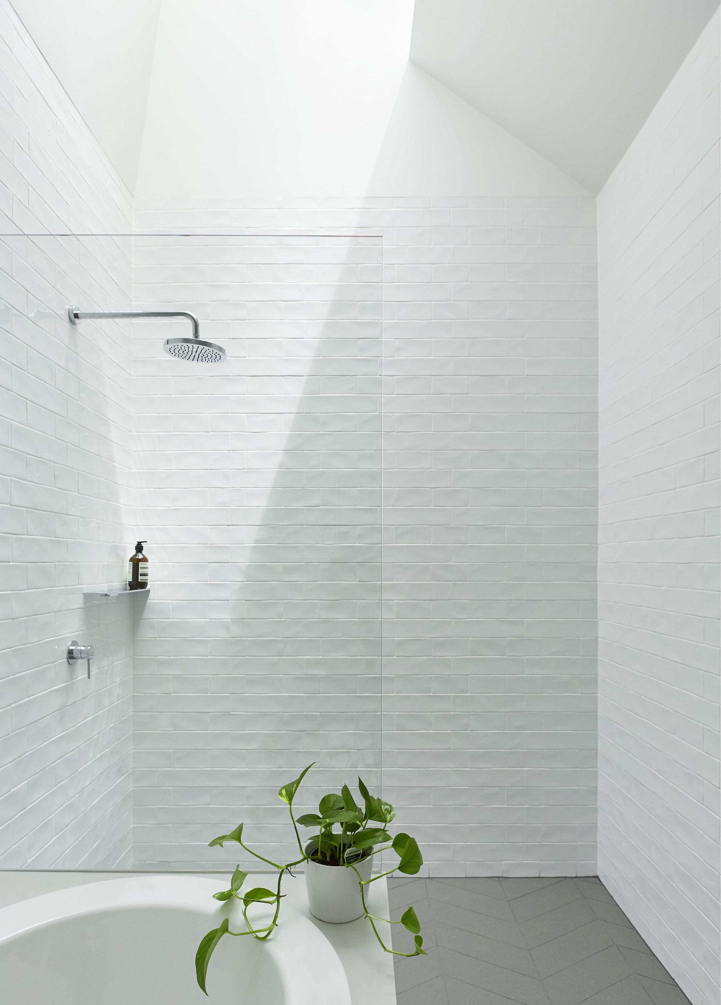 Skylit House 06 © Downie North Architects.jpg
