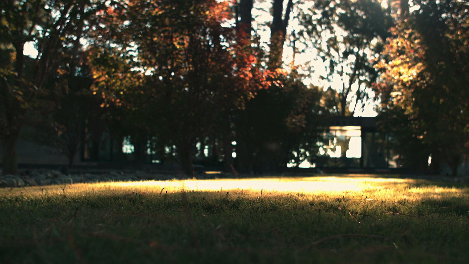 Cedar Creek-9.jpeg