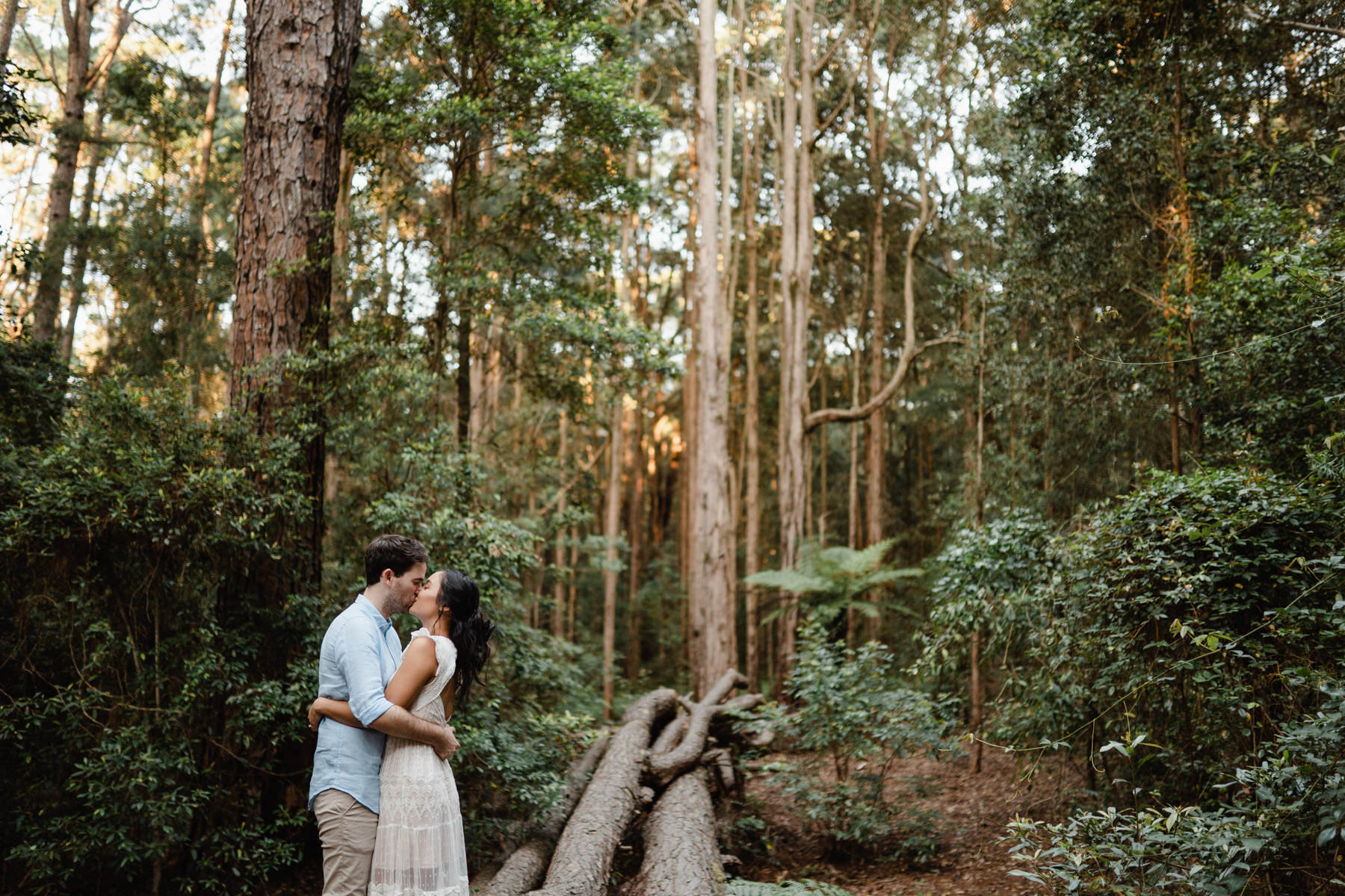 Watagans Pine Forest Engagement Shoot Hunter Valley 22