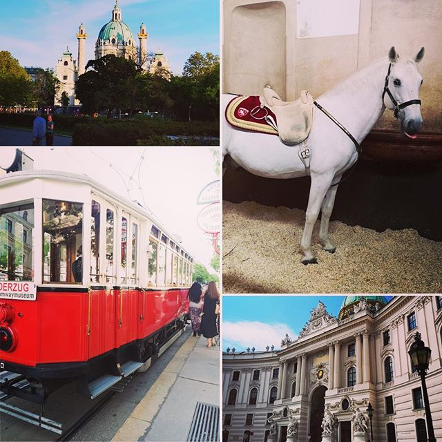 Trams, palaces & tongue-poking Lipizzaner stallions, guess where the River events team has been this week?