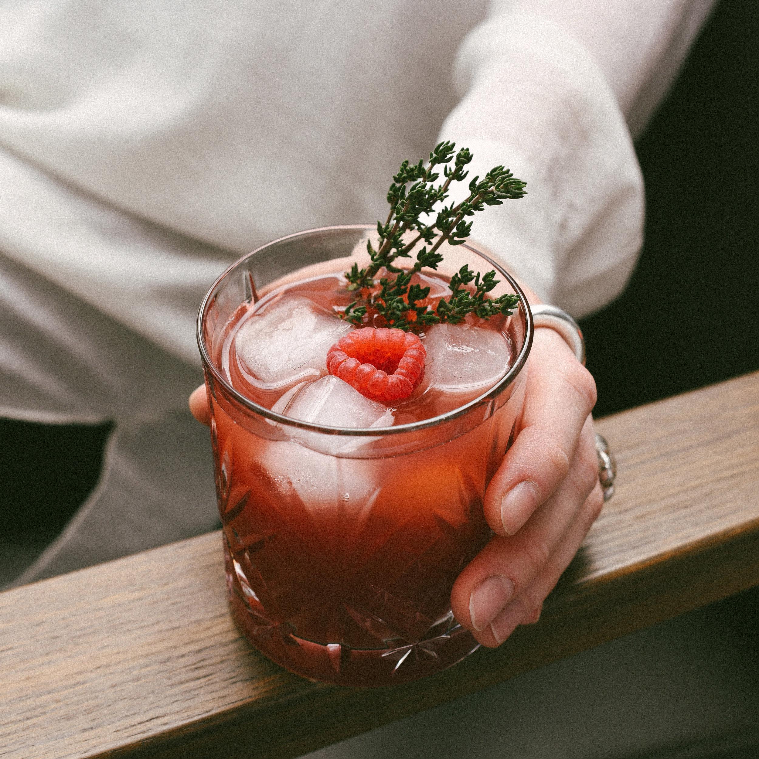 the Alpine Raspberry