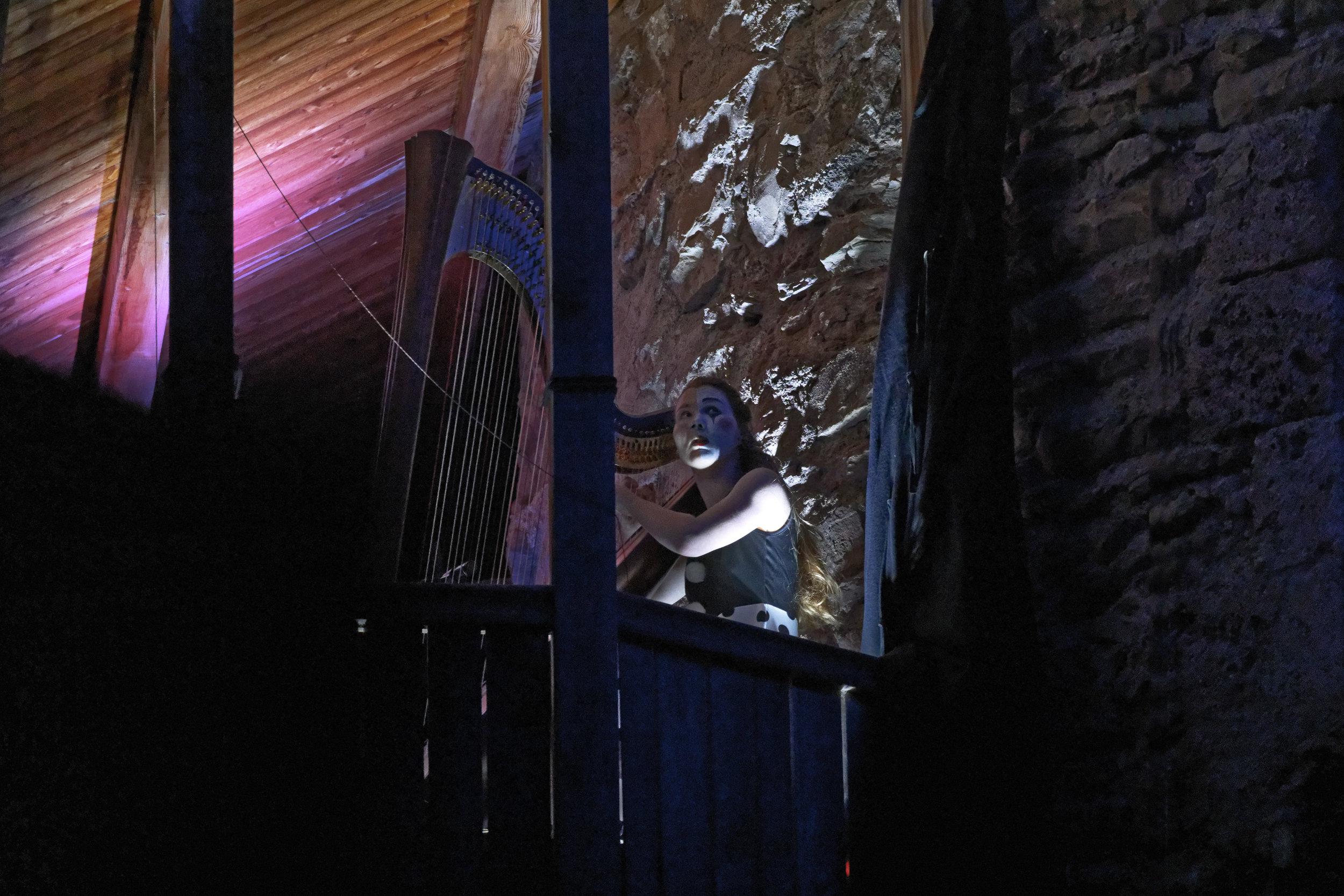 Fête de la Musique Tour de Peilz harpe suisse highline trickline show funambule circus performance spectacle ecole suisse Slackline Lyell Grunberg (3).jpg