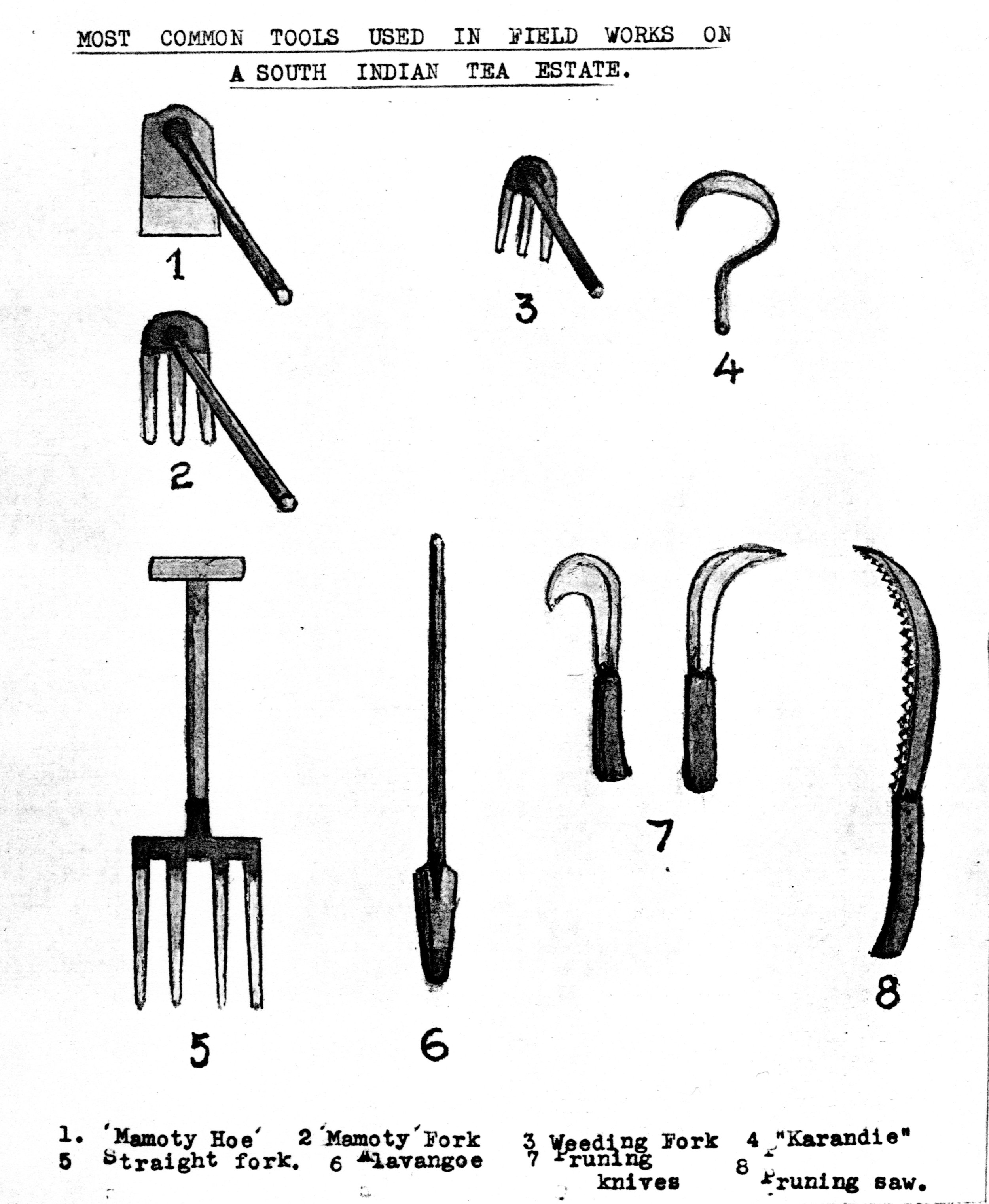 Figure 8: Sketches of common field tools