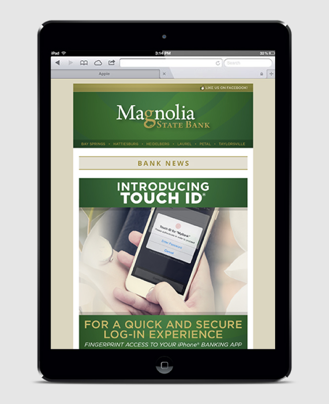 MAGNOLIA STATE BANK    Email Marketing