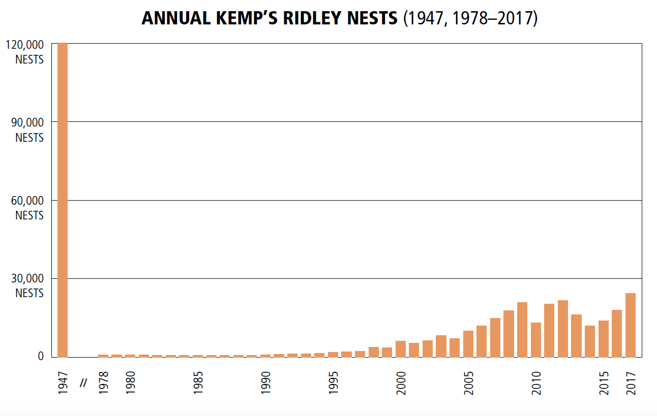 Figure.  Annual Kemp's ridley nests from 1947, estimated (1947) and observed (1978–2017). Adapted from: Bevan, E., T. Wibbels, B. M. Z. Najera, L. Sarti, F. I. Martinez, J. M. Cuevas, B. J. Gallaway, L. J. Pena, and P. M. Burchfield. 2016. Estimating the historic size and current status of the Kemp's ridley sea turtle ( Lepidochelys kempii ) population.   Ecosphere     7 (3):e01244.