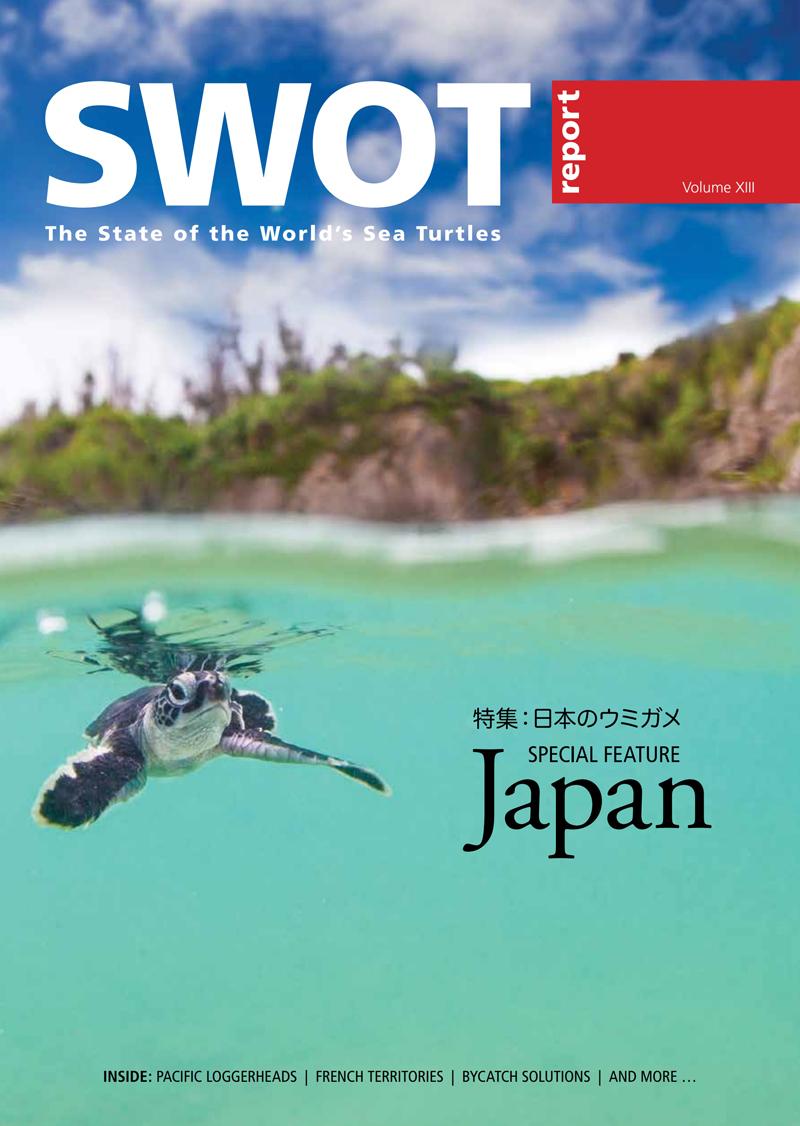 SWOT-13-cover-web.jpg