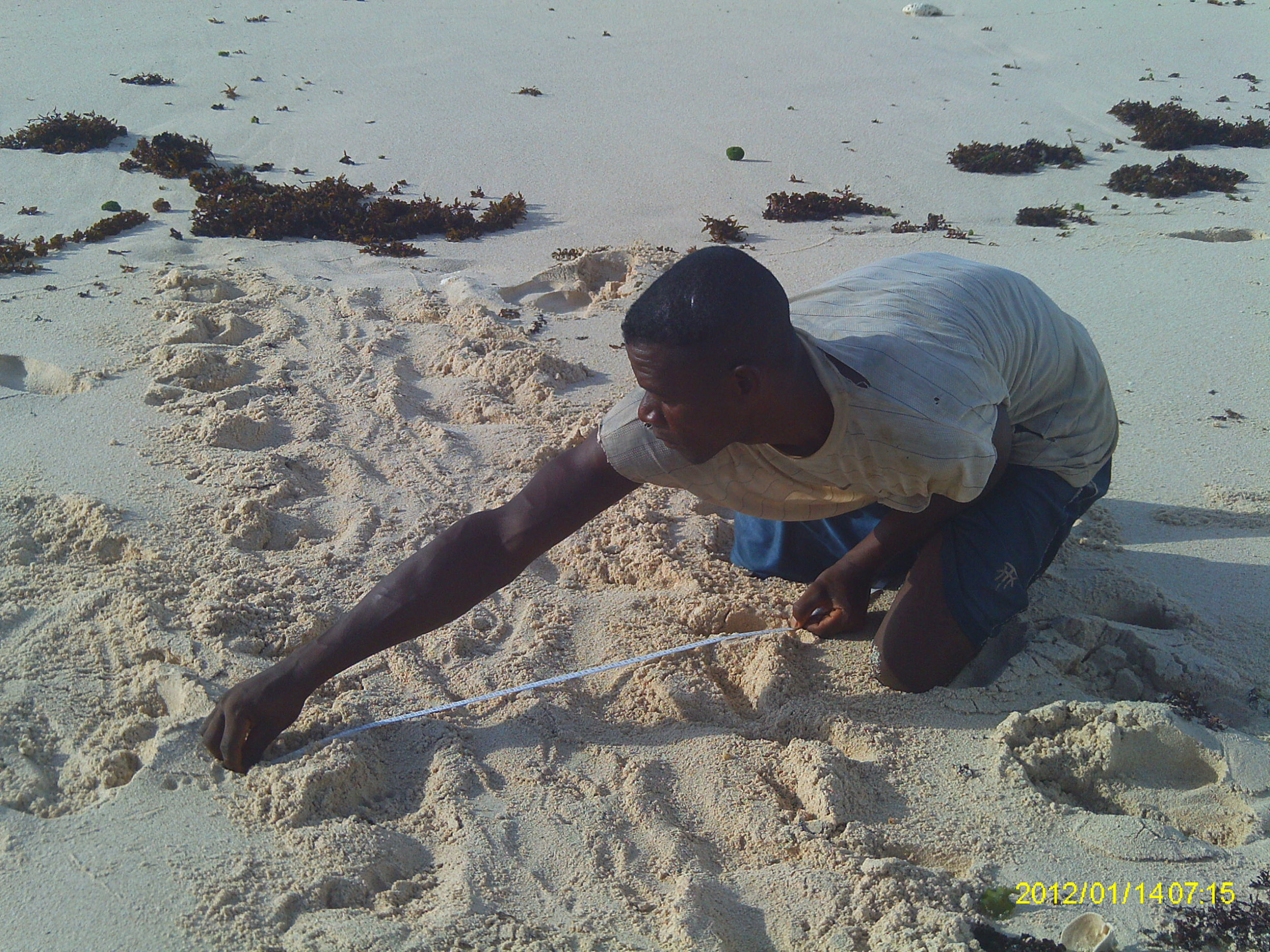 Madagascar-2012.JPG