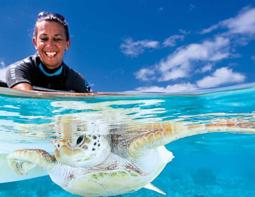 Cécile Gaspar releases a rehabilitated green turtle in French Polynesia. © TE MANA O TE MOANA