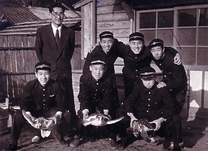 Yasuo Kondo and his students with captive-reared turtles in the 1950s. Image courtesy of Yoshizo Terumoto (front tow, left side)