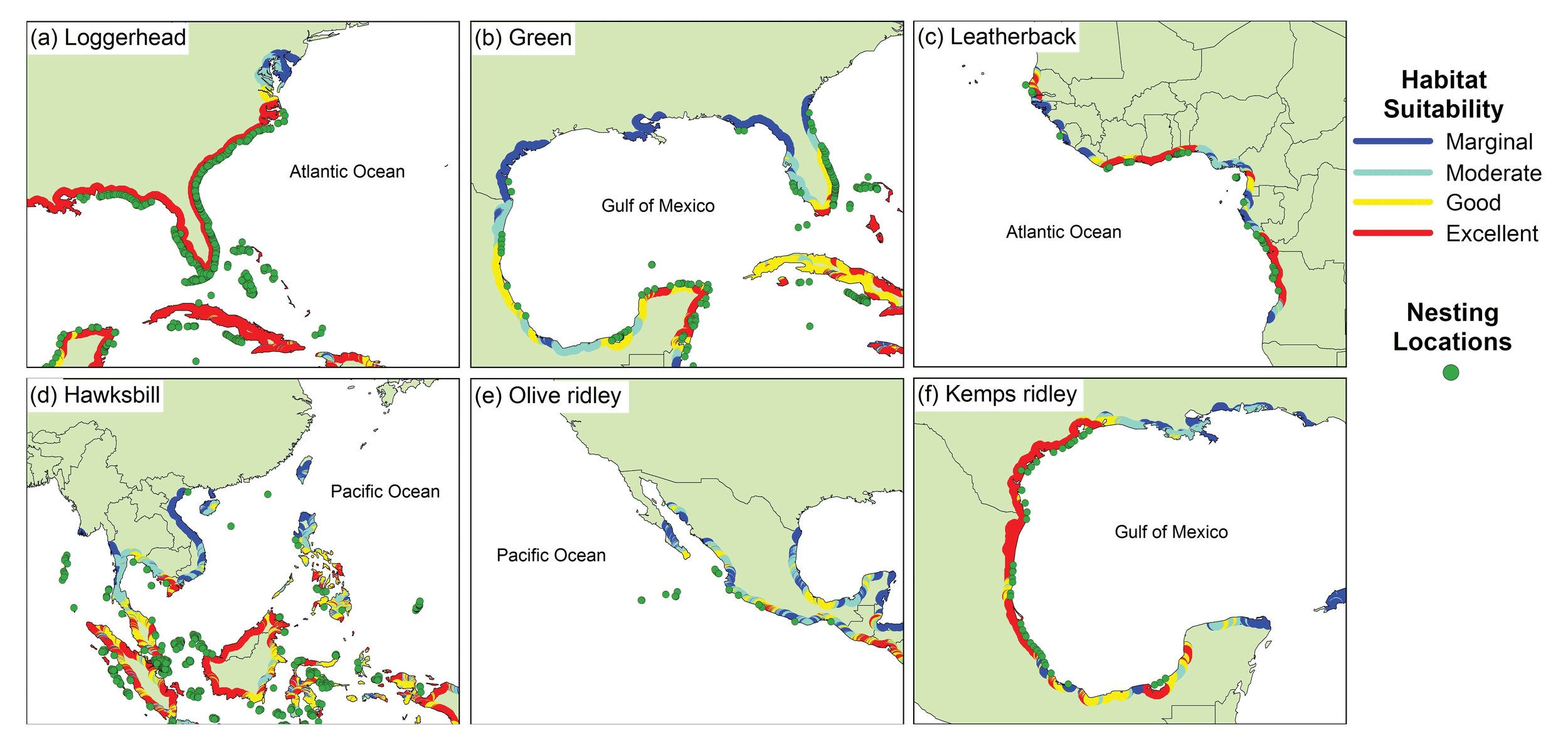 From Pike, D. A. 2013. Climate influences the global distribution of sea turtle nesting.  Global Ecology and Biogeography  22: 555–556.