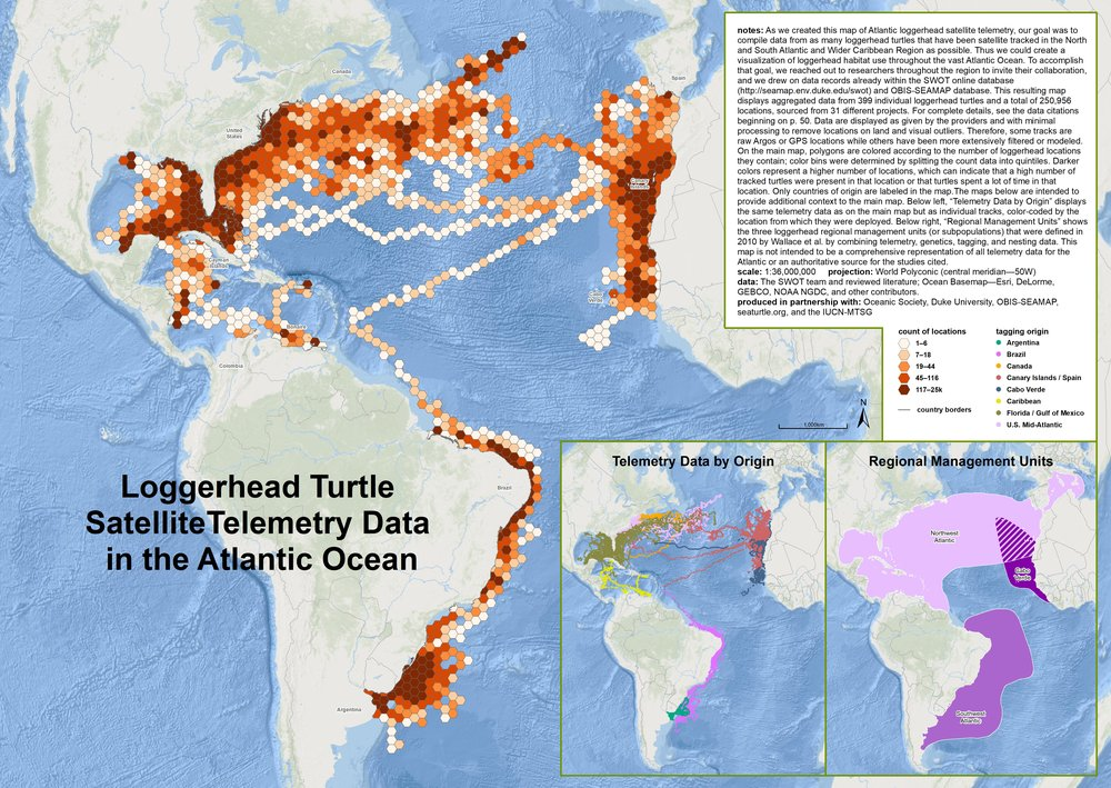 We published the first comprehensive map of loggerhead turtle movements in the Atlantic.