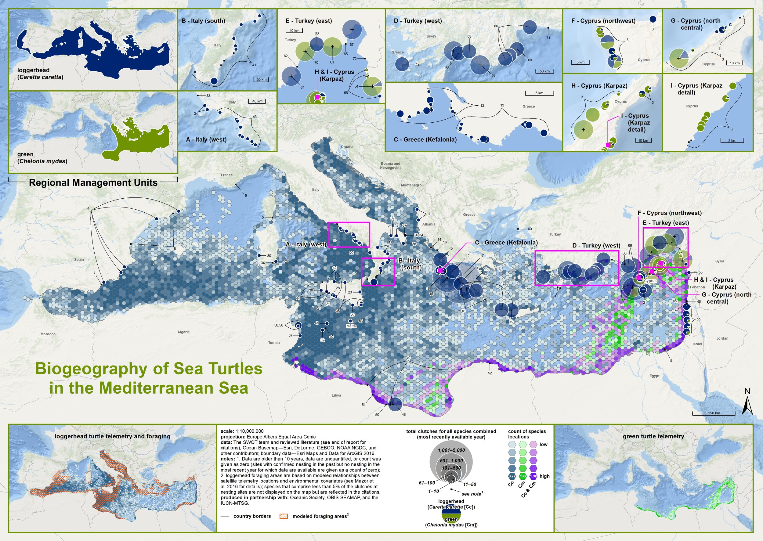 Biogeography of Sea Turtles in the Mediterranean Sea ( data citations ) |   SWOT Report   , vol. XIV (2019) .
