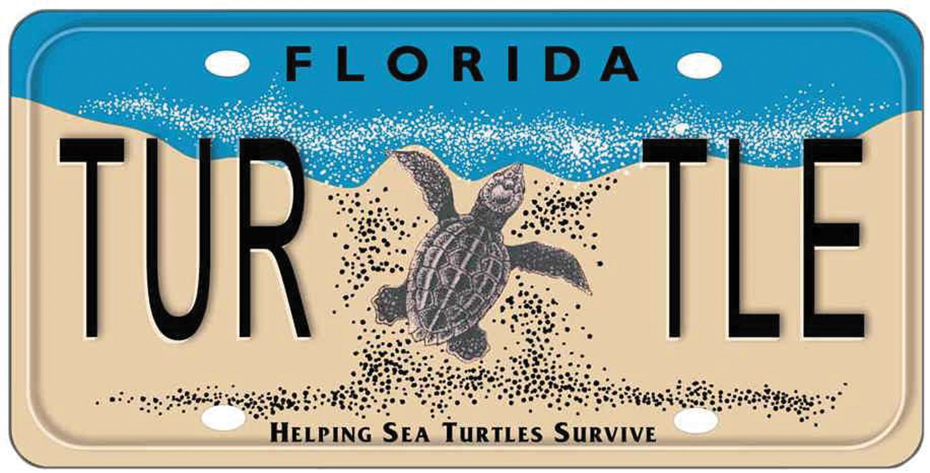 Sales of sea turtle specialty license plates, such as this one from Florida, U.S.A., are one creative way to generate funding for conservation programs.