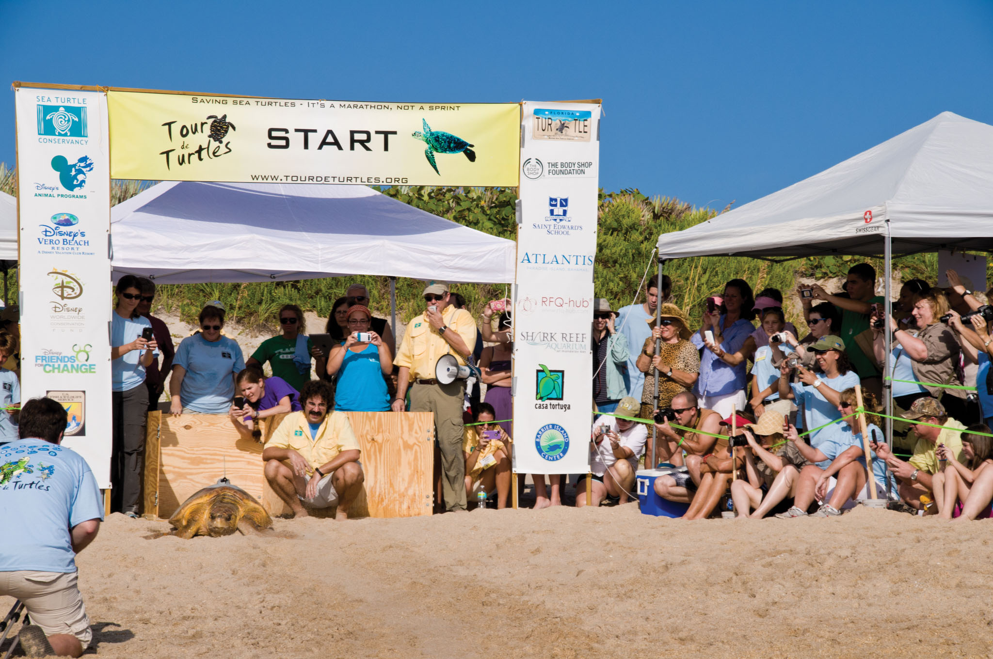 Spectators and corporate sponsors gather at the starting line of Sea Turtle Conservancy's Tour de Turtles. The campaign recruited corporate turtle sponsors to fund satellite tracking research and to generate public awareness for conservation. © Sea Turtle Conservancy