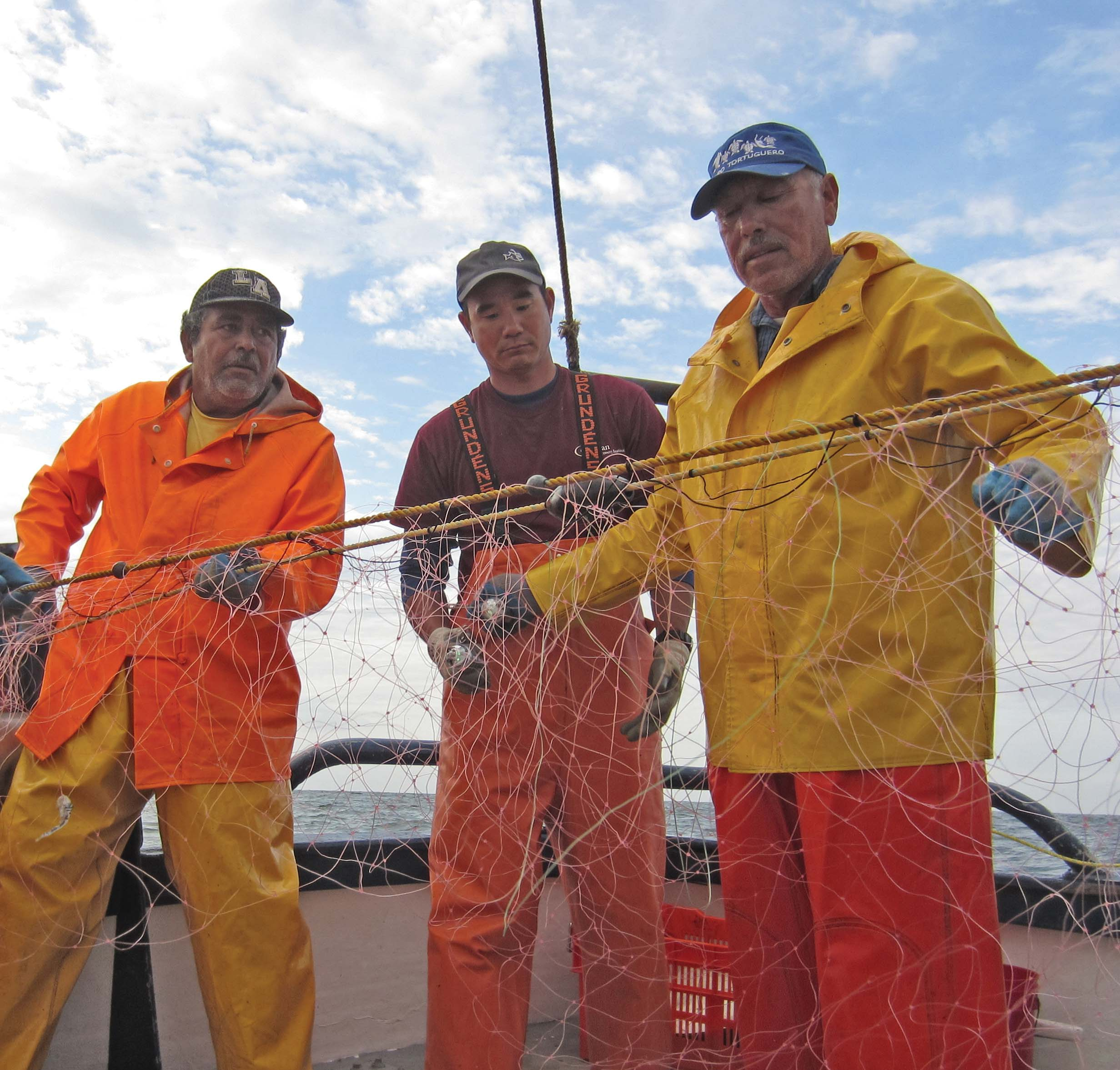 Researchers and fishermen collaborate in Mexico to test the use of lightsticks on gillnets to reduce turtle bycatch. © John Wang