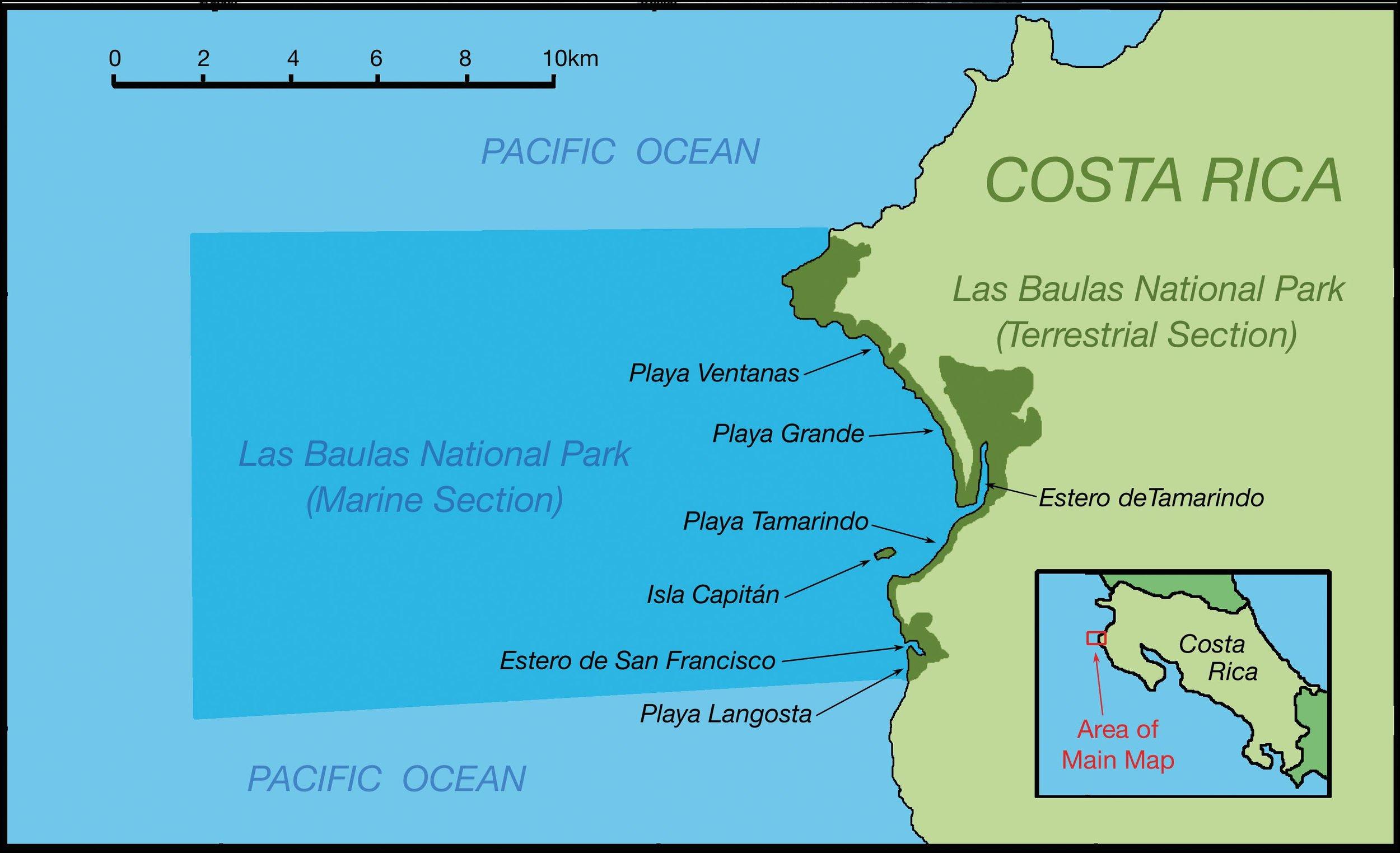 Las Baulas National Park, Costa Rica. © STEPHEN NASH / CONSERVATION INTERNATIONAL