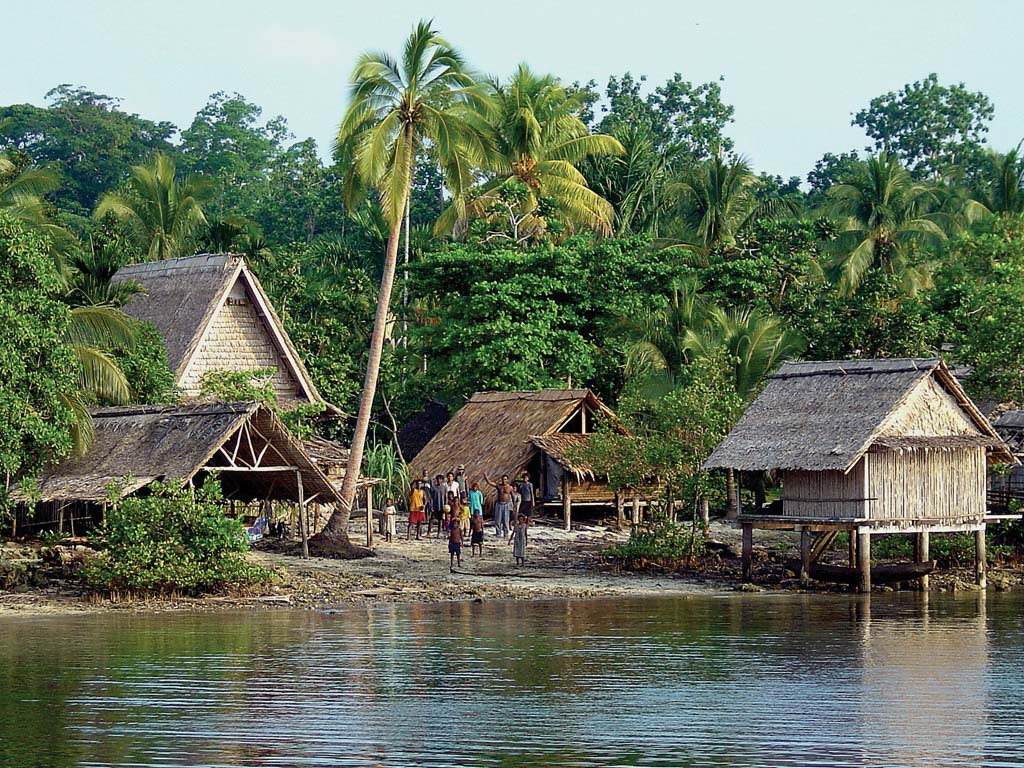 Village scene from a conservation area in the Solomon Islands © EMRE TURAK