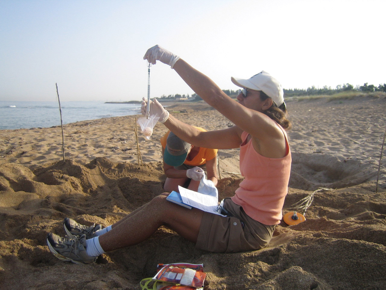 Mona Khalil continued her research on the nesting beach despite the war in her country. PHOTO COURTESY OF MONA KHALIL.