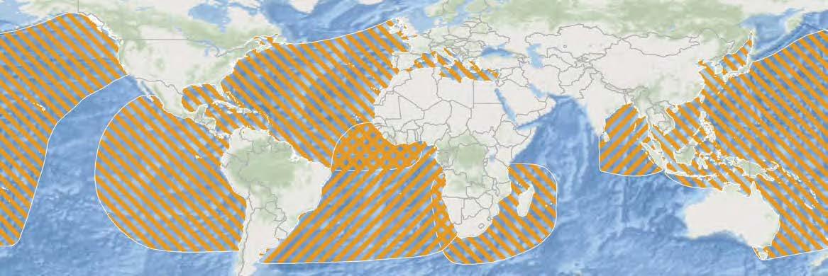 leatherback-rmus-global.jpg