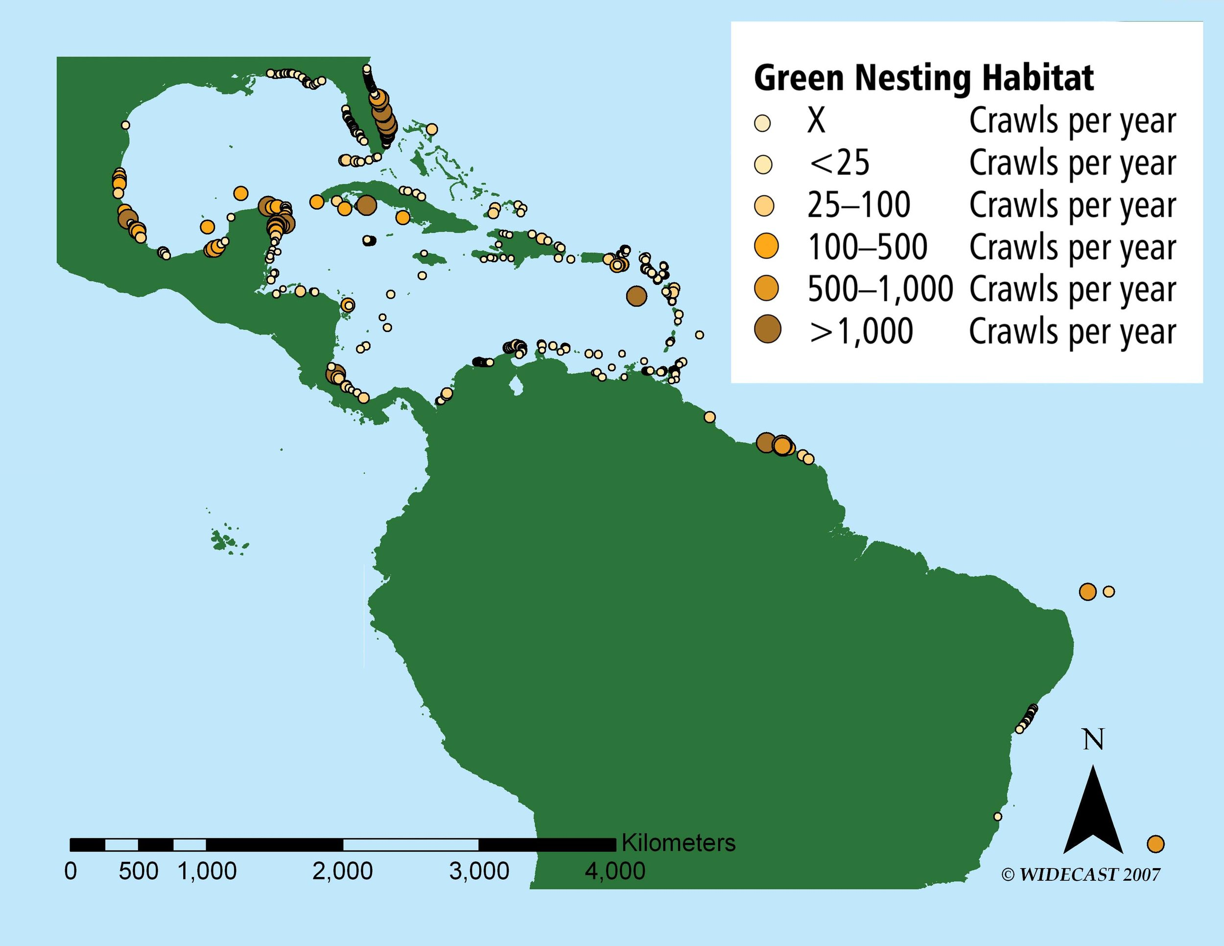Green Turtle Nesting Habitat in the Wider Caribbean Region. Text and map courtesy of Wendy Dow and Karen Eckert at WIDECAST. See PDF version of this article (linked at bottom).