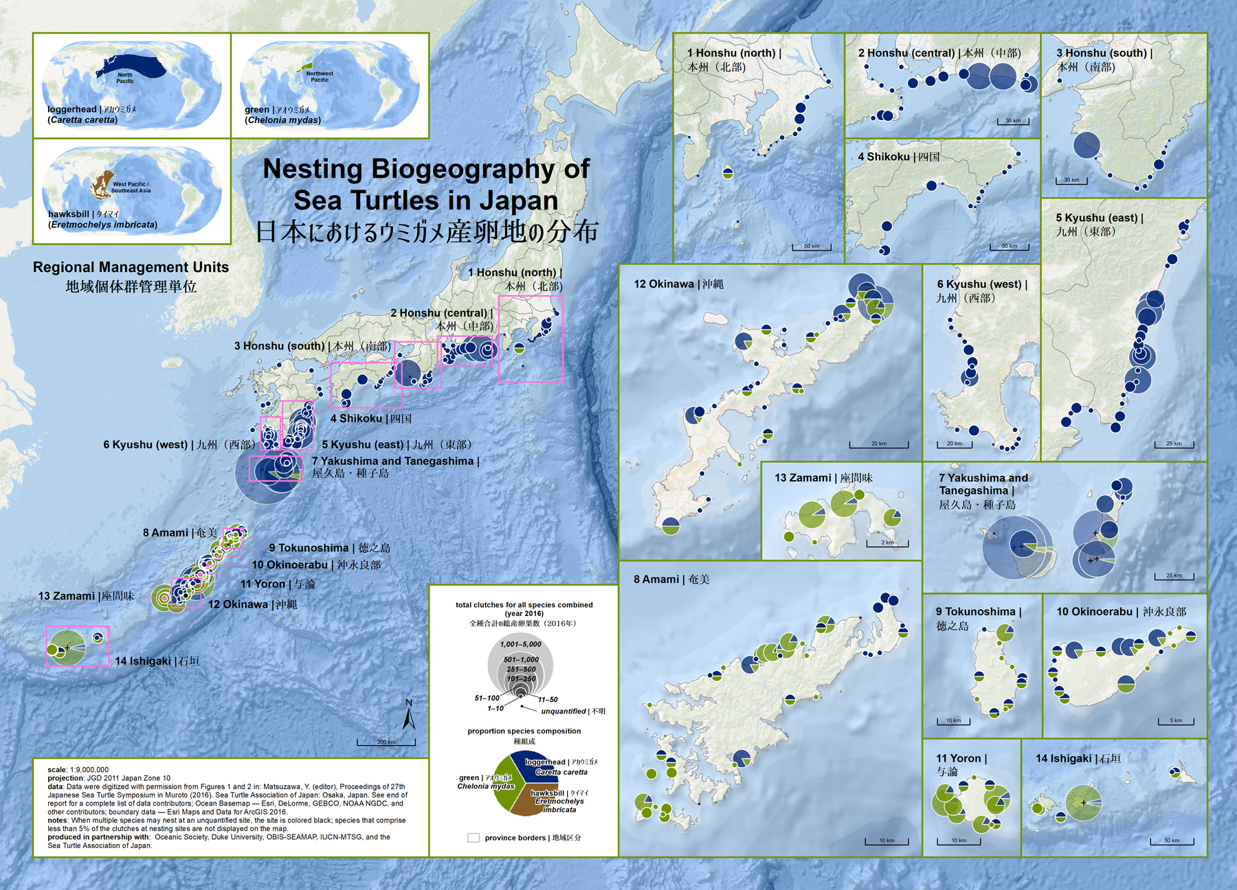 Nesting Biogeography of Sea Turtles in Japan ( data citations ) |   SWOT Report , vol. XIII (2018) .