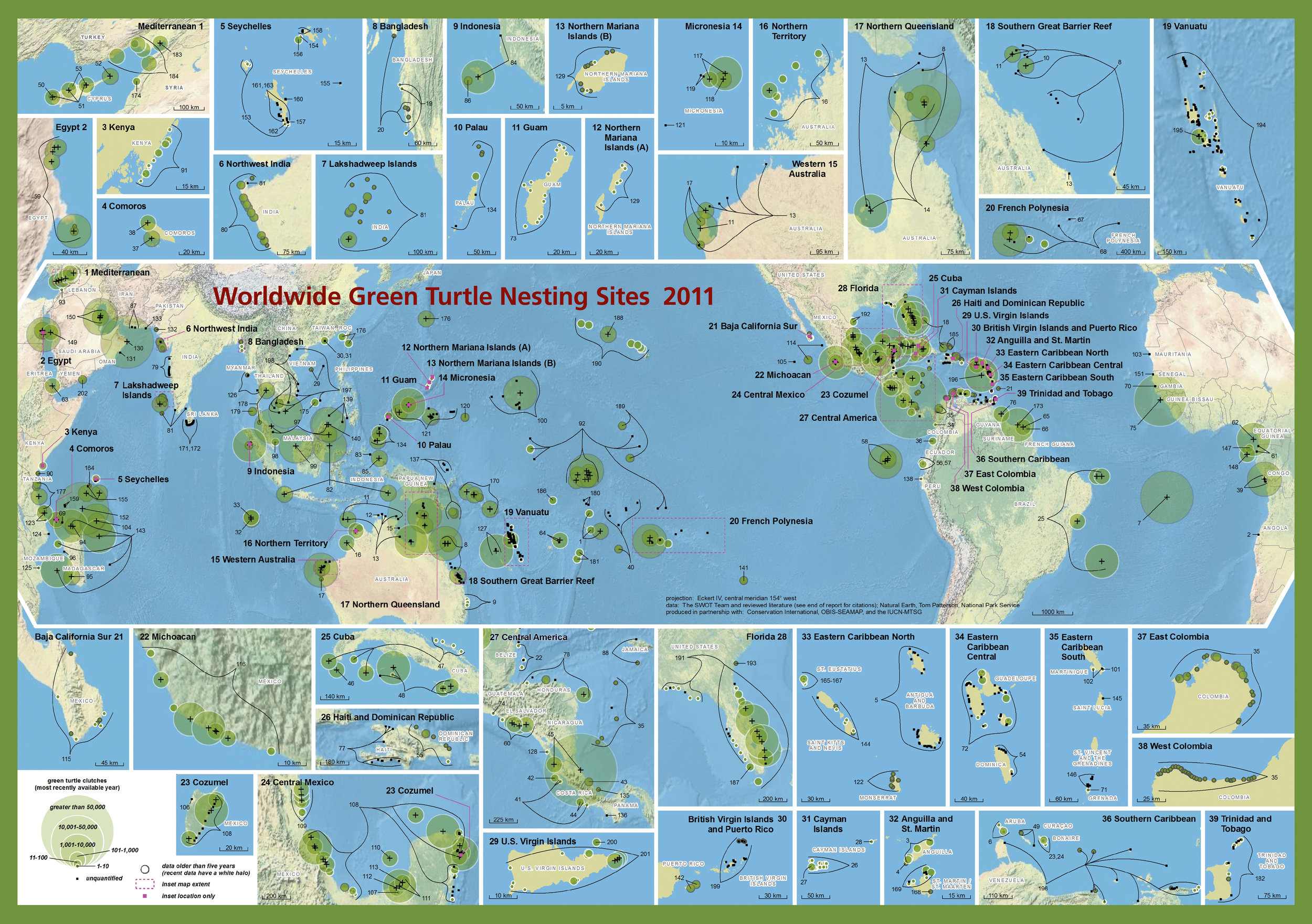 Worldwide Green Turtle Nesting Sites ( data citations ) |   SWOT Report , vol. VI (2011) .