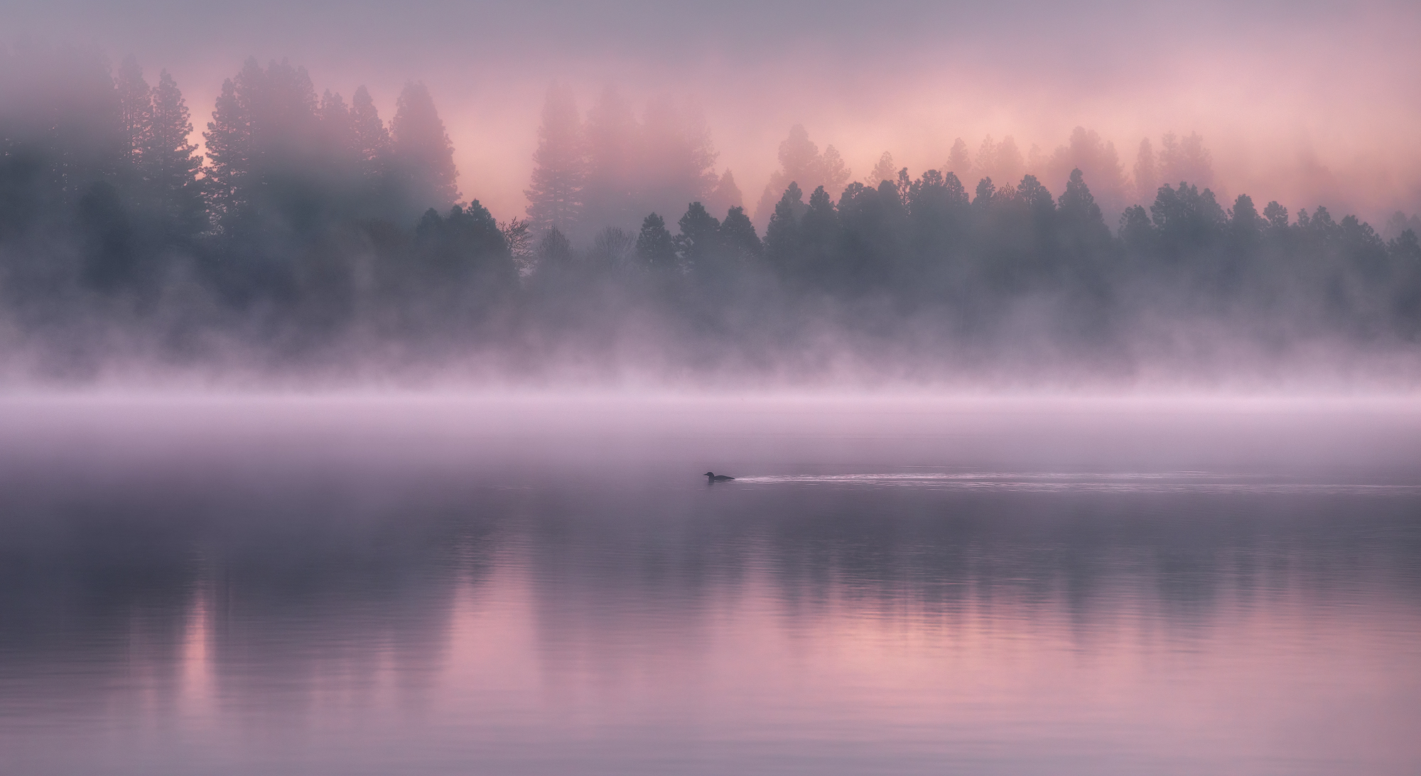 Siskiyou-Fog.jpg