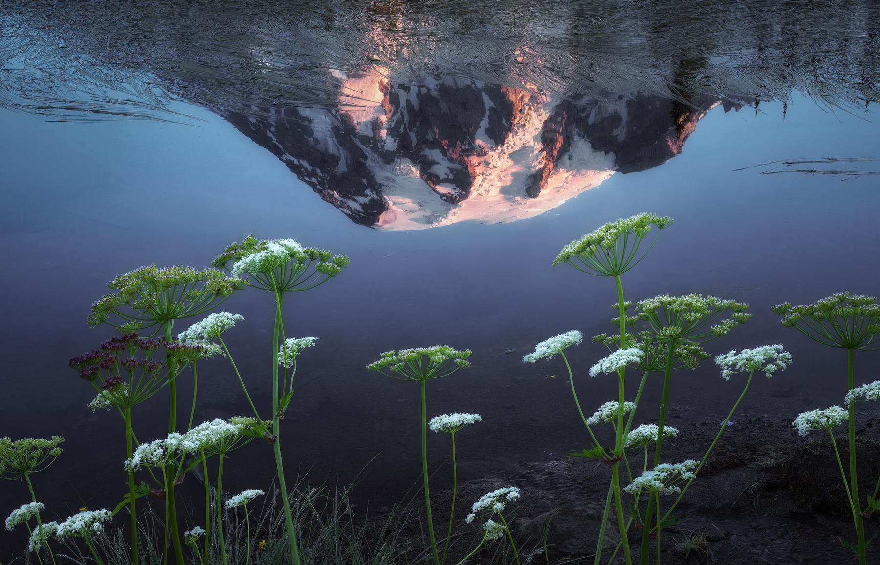 Mount-Rainier-Reflection.jpg