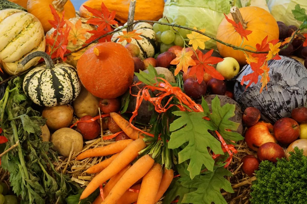autumn_autumn_decoration_vegetables_harvest-1217146.jpg
