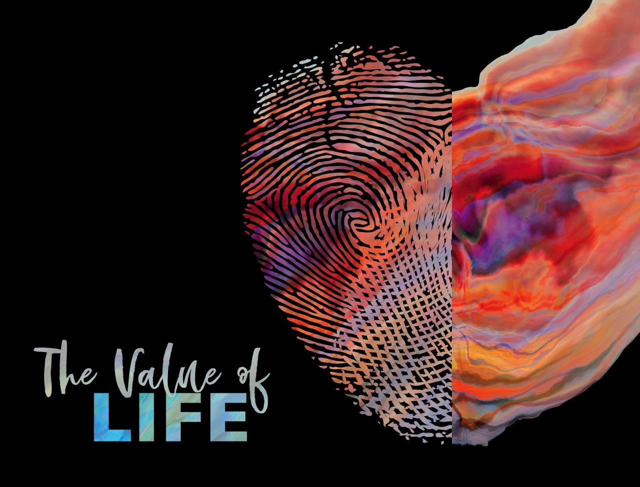 Value of Life Cover Slide.jpg