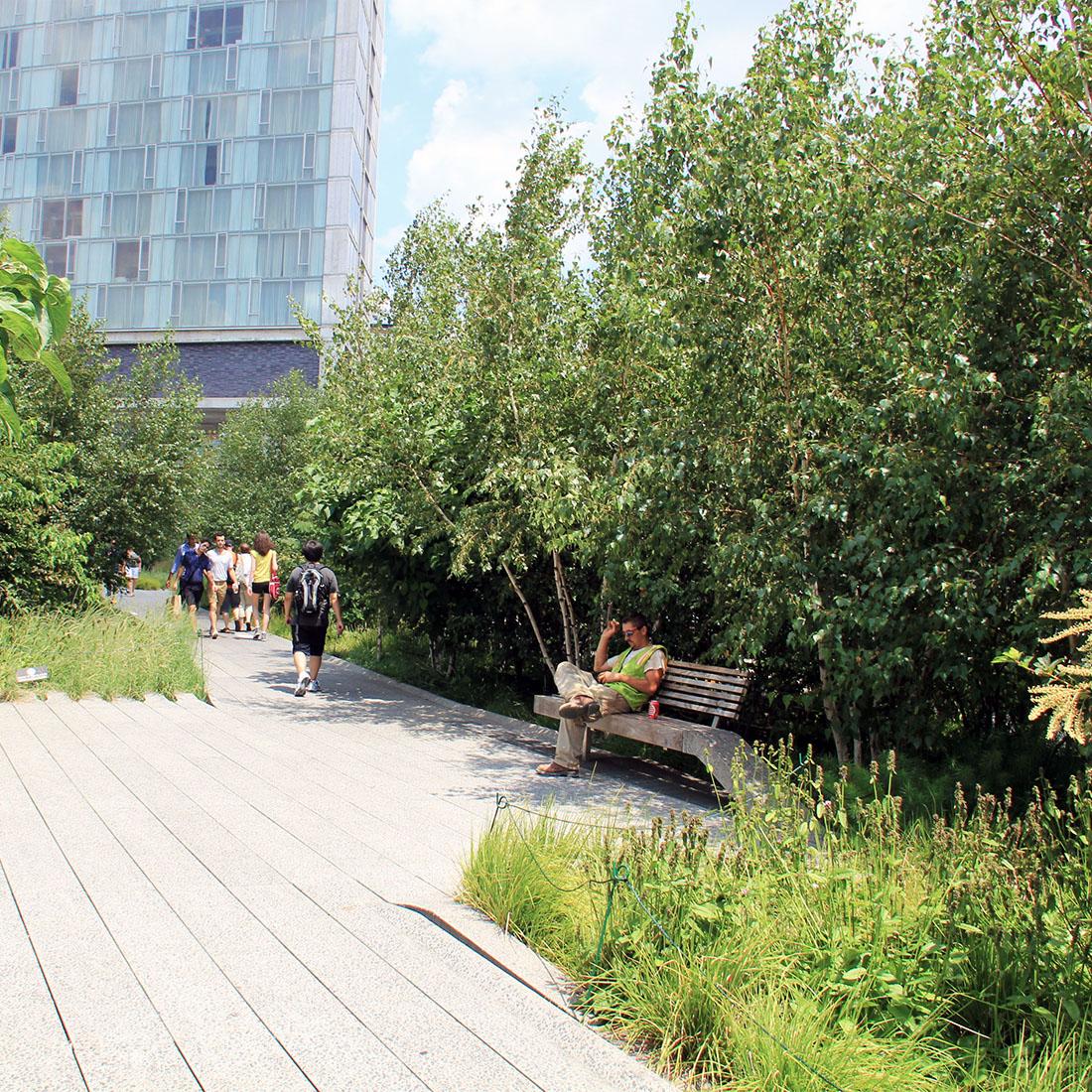The New York High Line